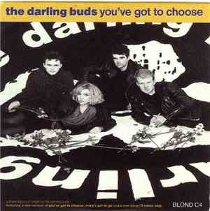 The Darling Buds - You've Got To Choose
